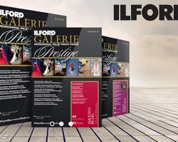 Ilford Galerie Prestige Canvas Natural 340(GPCN)